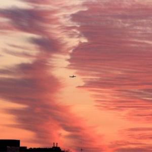 八尾空港ランウエー27エンター夕刻のフォト散歩