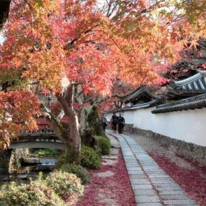 天野山金剛寺の名残の紅葉