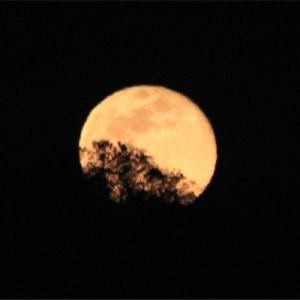 平成最後の月見 満月