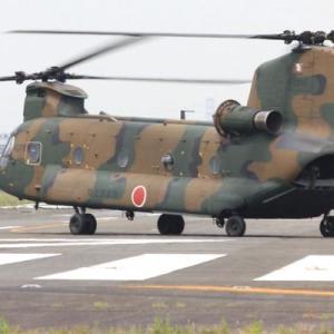 八尾空港ランウエー27エンターへフォト散歩 航空隊統一編隊飛行訓練