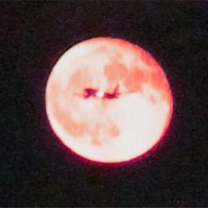 月丼絶好のストロベリームーン