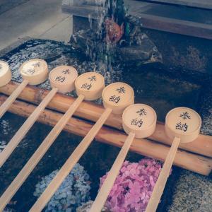雨にぬれても-藤森神社の紫陽花-