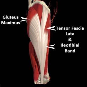 肩こりと腰痛に効くラテラルラインのリリース