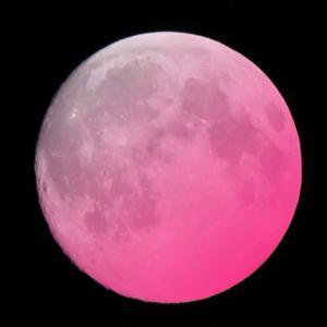 外出制限は2週間延長・・でも満月の今夜は感謝を。