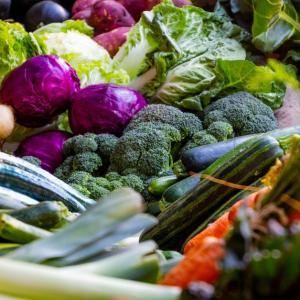 野菜中心の食事で免疫力が上がる理由