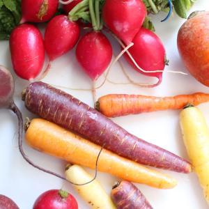 心を落ち着けたい時に根菜を&お勧めの根菜ヤーコン!
