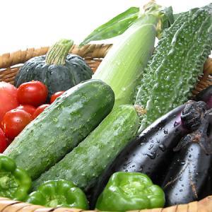 身体を冷やさない夏野菜の食べ方