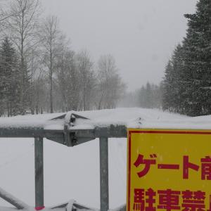 2019.03.15 西暑寒別岳スキー