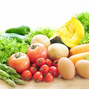 ネットワークビジネス 健康食品の必要性