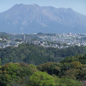 噴火してない桜島を見るのは久々です。