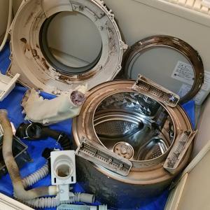 愛知県小牧市 Panasonic製ドラム式洗濯乾燥機クリーニング同時乾燥排水洗浄をアップしました