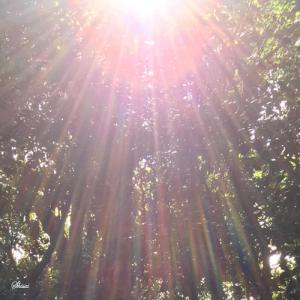 【開運☆秋分の日】天と地上がつながるパワフルな日に本来の自分と世界に還りましょう。