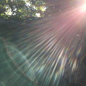 【天からのメッセージ】感情に翻弄されるべからず。天高き魂を思い出せ。