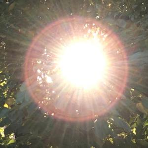 2/22は全ての人に神の恩恵があり想像通りに全てうまくいく日!?