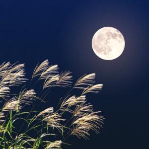 【開運お月見】十五夜にお月見なすったお方は必ず十三夜も愛でましょう☆