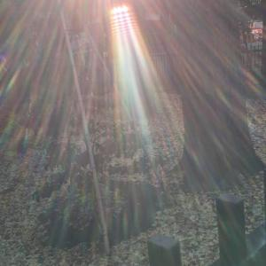 【最上の開運日☆天赦日】今年初!一粒万倍日&甲子も重なる超大吉日☆