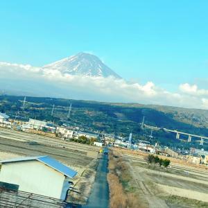 今日から東京です。