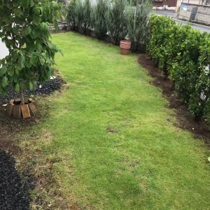 ガーデニング 植木鉢を断捨離