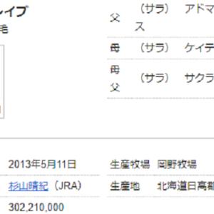 第63回 ダイオライト記念(Jpn-2)予想情報公開!