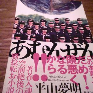 令和のカストリ小説(「あむんぜん」 平山夢明)