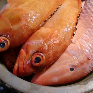 今年も沖縄魚届きました!