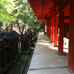 京都:紅葉の季節!秋の古都をたのしむ