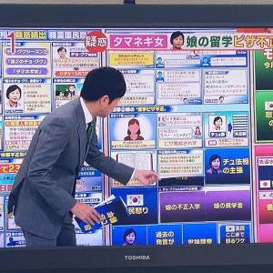 モーニングショーが激変、腸内フローラや玉ねぎ女の話題が最優先とは 今、韓国の「玉ねぎ女」を最優先に報道する事か?