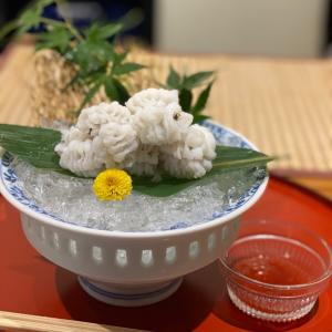 京都に夏はコレ!初鱧と2年寝かせた日本酒でひとり飲み