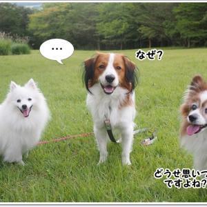 ある日突然、箱根に行った。