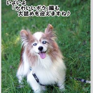 終わり良ければ・・・じゃない!@箱根