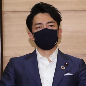 小泉環境相「菅首相はものすごいスピード。追いついていかないと」就任1カ月