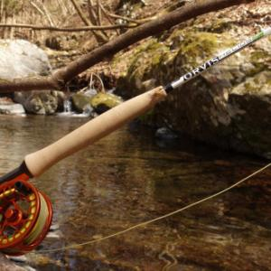 シャロム調査とロッドテスト釣行