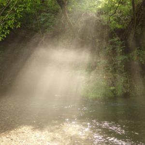 変化する渓の流れ
