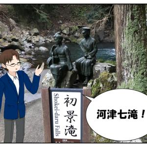 今週の株主優待もなし!河津桜と七滝観光に行ってきました!