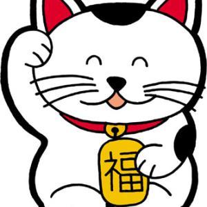 東京都高野連のウエブサイトに潜在的セキュリティリスク