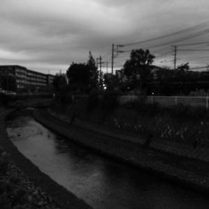 朝ジョグ:遊歩道周回(10/17 4.1km 21min)