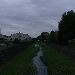 朝ジョグ:遊歩道周回(10/29 5.1km 25min)