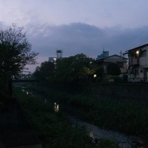 朝ジョグ:遊歩道周回(10/31 5.1km 25min)