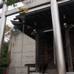 紅葉瀧(11/3 10.1km 53min)