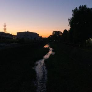 朝ジョグ:遊歩道周回(11/6 5km 25min)