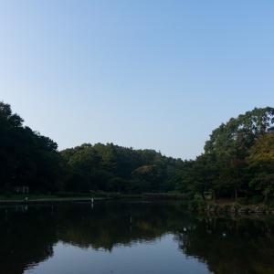 こども自然公園(8/22 11.6km 60min)
