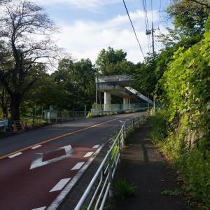 朝ジョグ:こども自然公園(9/4 11.7km 54min)