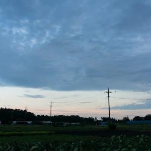 ぐるっとハーフ(9/27 20.6km 98min)