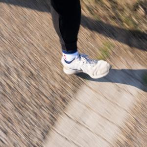 朝ジョグ:遊歩道+α周回x2(2/25 5.8km 27min)