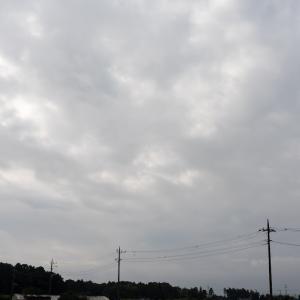 朝練:ご近所(8/23 22.1km 48min)