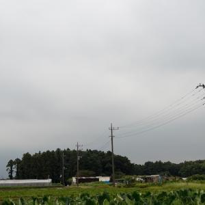 朝練:ご近所(9/1 21.7km 47min)