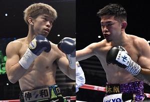 年末大一番 井岡一翔VS田中恒成 両者の戦力比較