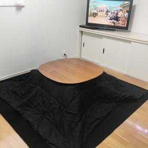 テレビっ子だらけの我が家のテレビ、ぶっ壊れる。