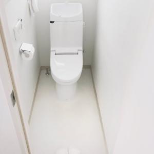 トイレ美に燃える。毎日、毎週、毎月のキロク。