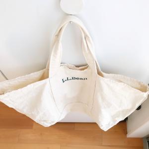 ミニマリスト、新しいバッグを買う。